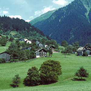The gorgeous rolling hills of the Austrian countryside