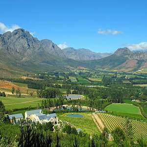 Full Day Cape Winelands (Private)