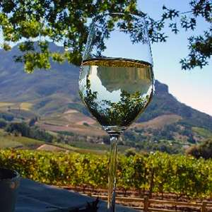 Half Day Cape Winelands (Private)