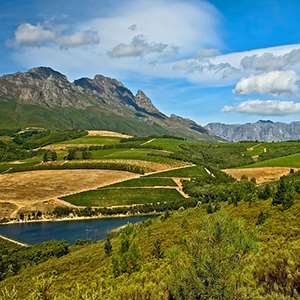 Full Day Cape Winelands (Small Group)