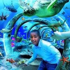 SeaLifeLondonAquarium