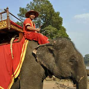 Elephant Ride to Phnom Bakheng for Sunset