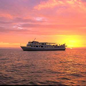 Captain Cook Dinner Cruise