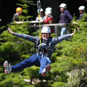 Ziptrek Mammoth Tour