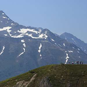 Denali Wilderness Walking Tour