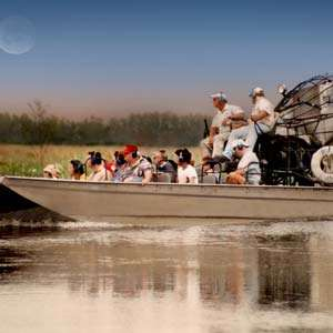 Jean Lafitte Airboat Swamp Tour with Transportation