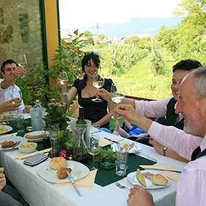 Wachau Dinner with Wine Tasting