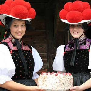 Iconic Black Forest with Open Air Museum