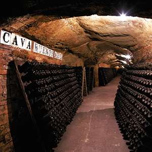 Montserrat and Codorniu Wine Cellars