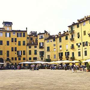 Lucca, Vinci and Olive Oil