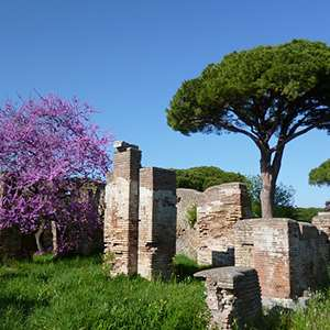 Excursion to Ancient Ostia By Train