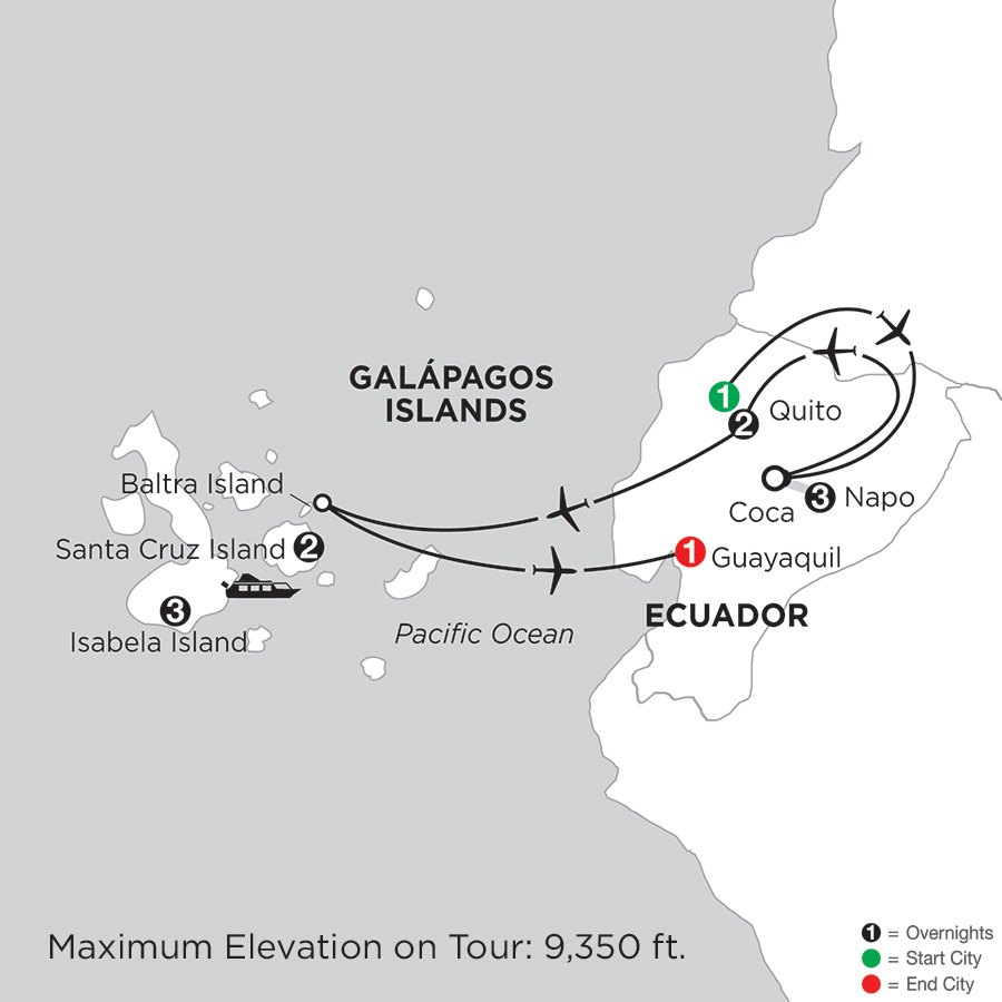 with Ecuador's Amazon