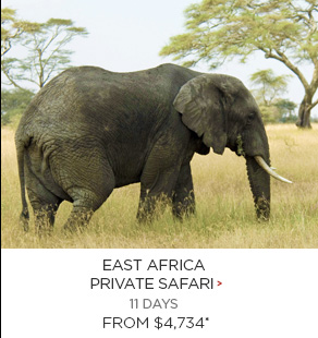 8. East Africa Private Safari 11 days Now $4,734*