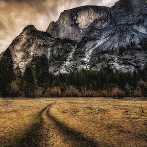 Yosemite National Park In Winter (NY)