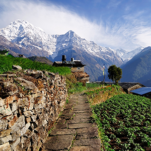 Dubai & Nepal Tour - Globus® Escorted Tours