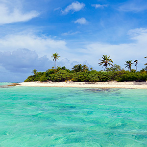 Best of New Zealand with Fiji