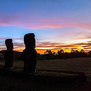 Vineyards Of South America With Easter Island (SWE)