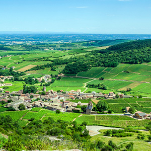 Burgundy & Provence for Wine Lovers – Cruise Only