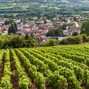 Grand France for Wine Lovers