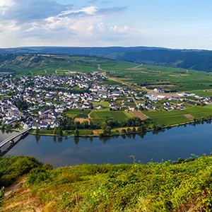 The Rhine & Moselle - Northbound