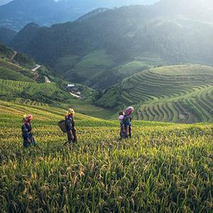 Ultimate Southeast Asia & The Majestic Mekong – with Sapa, Hue & Danang – Southbound