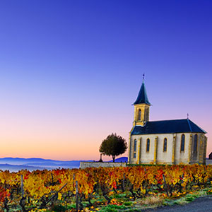 Burgundy & Provence — Cruise Only Southbound