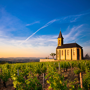Burgundy & Provence — Northbound