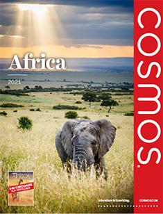 Cosmos Africa 2021 (ebrochure)