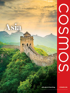 Cosmos Asia 2020 (eBrochure only)