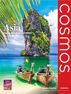 Cosmos Asia 2021 (ebrochure)