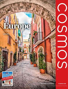 Cosmos Europe 2020 (eBrochure Only)
