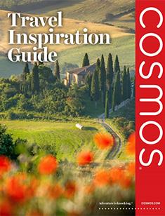 Cosmos Travel Inspiration Guide