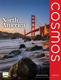 Cosmos North America 2020