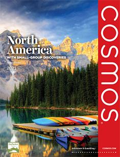 Cosmos North America 2021 (ebrochure)