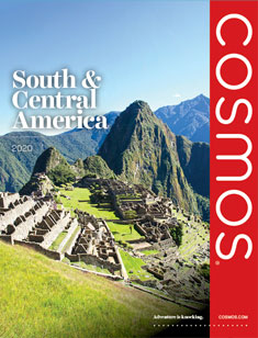 Cosmos South America 2020 (eBrochure)