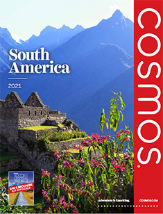 Cosmos South America 2021 (ebrochure)