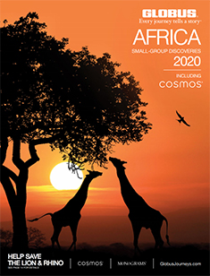 Globus Africa 2020