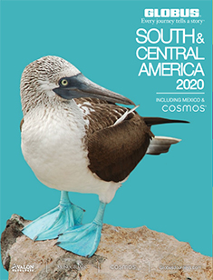 Globus South America 2020