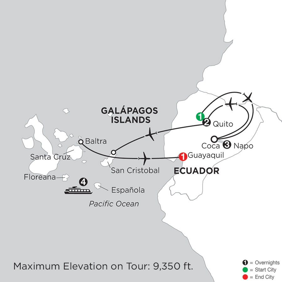 Cruising the Galápagos on the Coral I/II – 4-Night cruise with Ecuadors Amazon