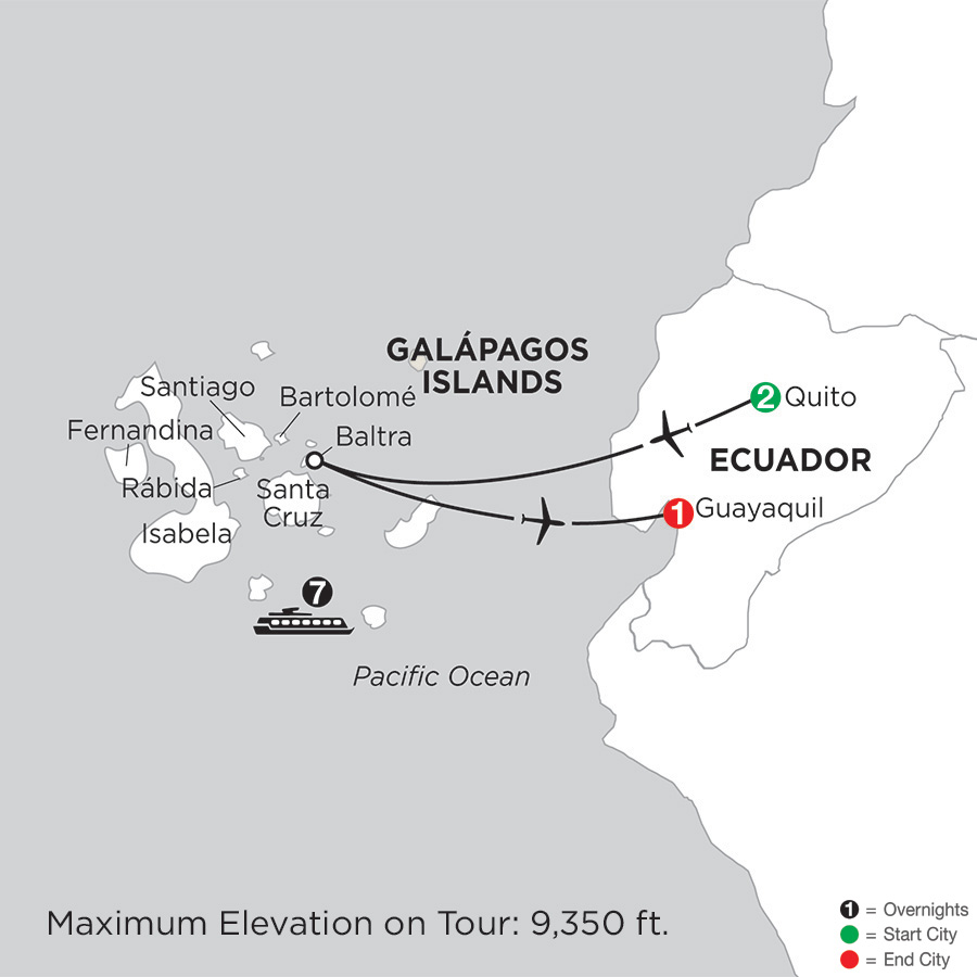 Cruising the Galápagos on board the Coral - 7 Night cruise