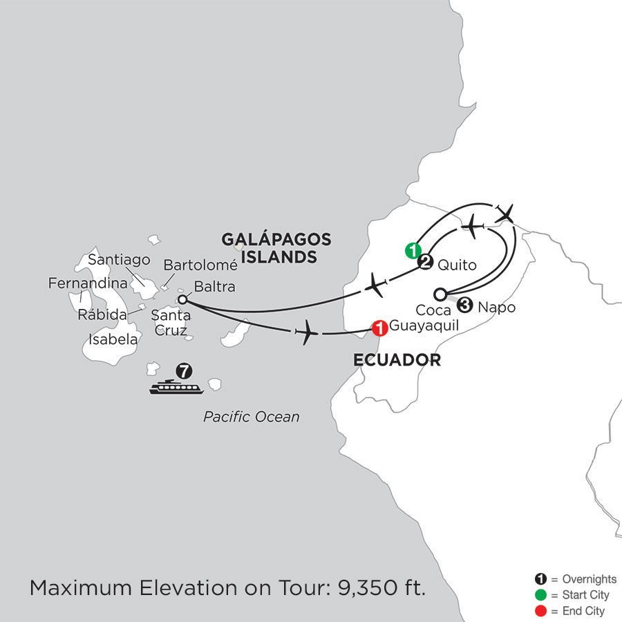 Cruising the Galápagos on board the Coral - 7 Night cruise with Ecuadors Amazon