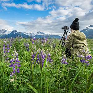 Anchorage Photo Walks
