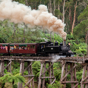 Puffing Billy Steam Train & the Maginificent Dandenong Ranges