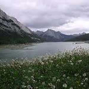 Maligne Valley, Canyon & Lake Tour