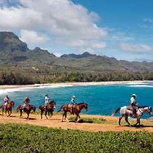 Maha'ulepu Beach Horseback Ride