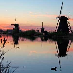 Excursion Kinderdijk