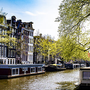 Bites & Highlights of Amsterdam