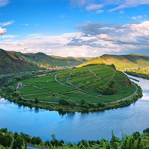 Vineyards, Villages & Views of the Moselle