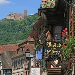 Into the Alsace Countryside with Wine Tasting