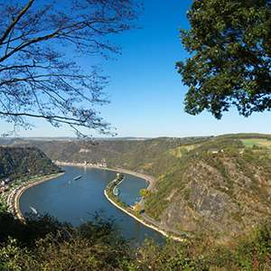 Rhine Gorge Cruise - Castles, Vineyards & the Lorelei